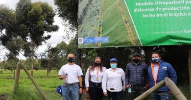 Gobernación sigue avanzando para garantizar la reforestación en Cundinamarca